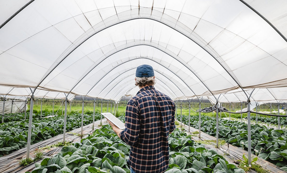 man in plaid shirt uses asset monitoring solution in greenhouse